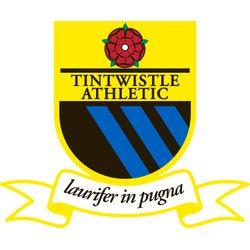 tintswhistle fc